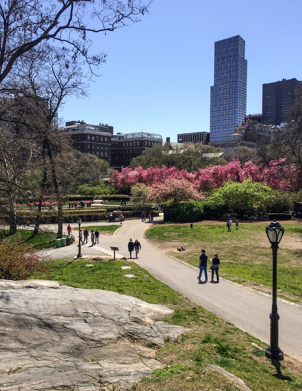@ Central Park North_Conservatory Garden_Photo © 2016 Joseph Kellard:kellardmedia.com .jpg