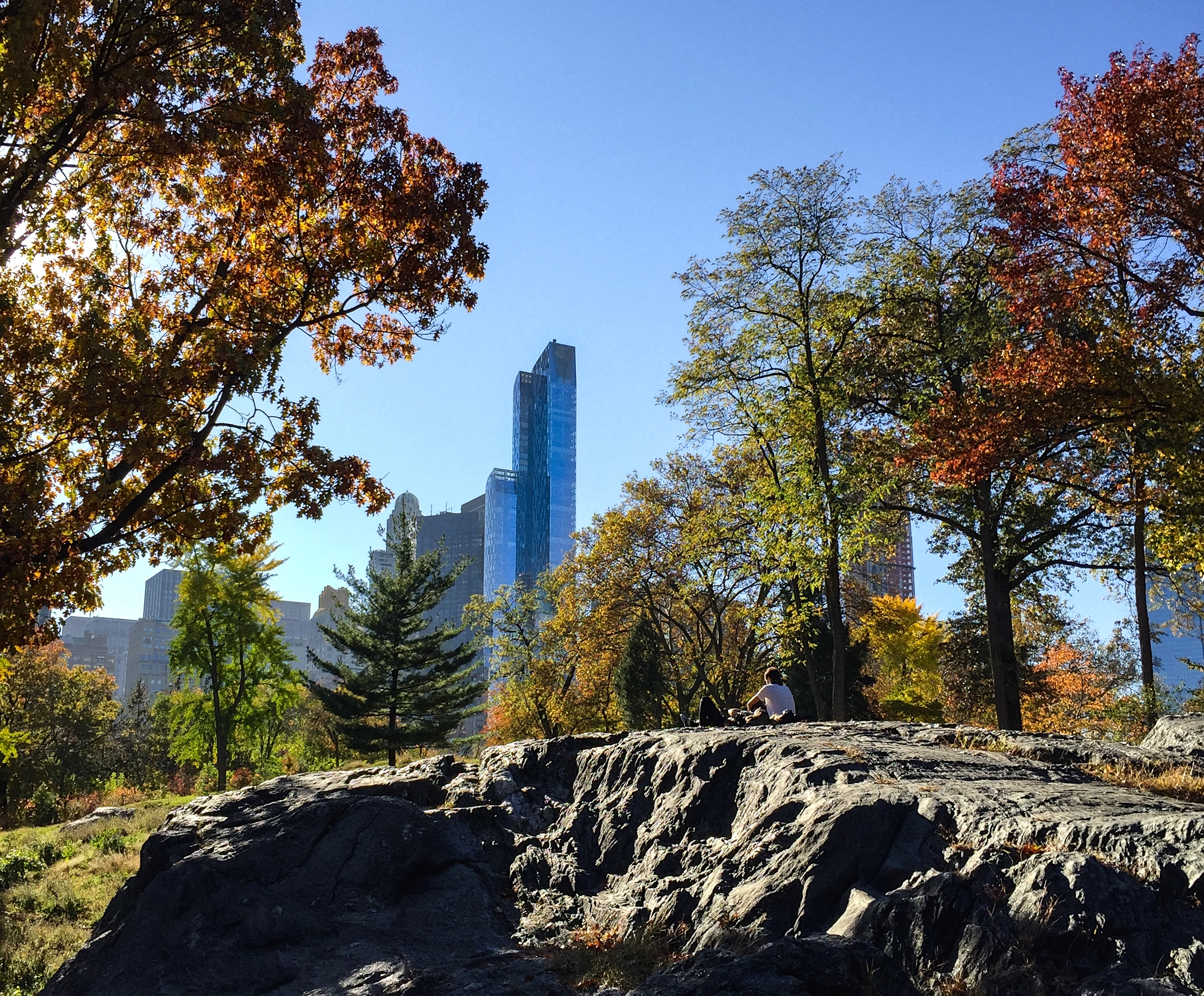 Autumn_Central Park_Photo © 2016 Joseph Kellard:kellardmedia.com.jpg