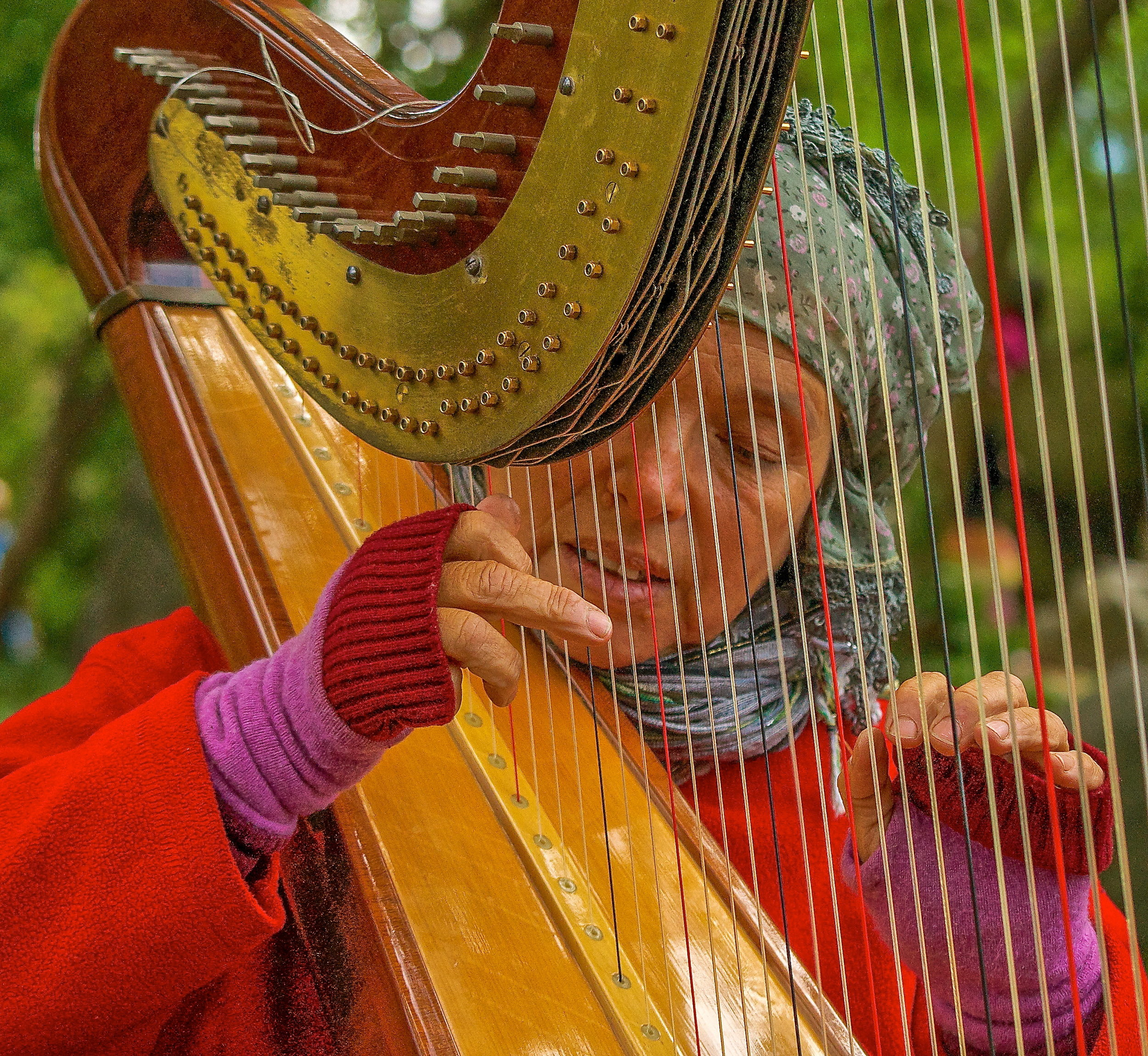Harpist_Photo © Joseph Kellard:kellardmedia.com.jpg