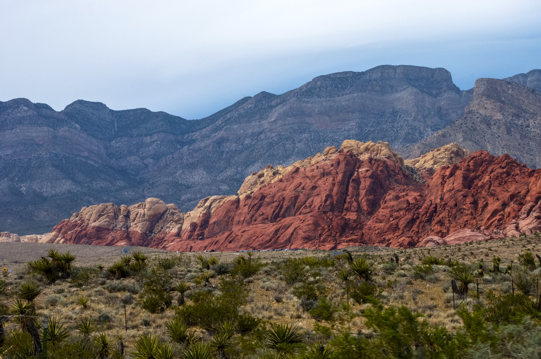 @ Red Rock Canyon_Las Vegas_Nevada 4.15.18__Photo © 2018 Joseph Kellard:kellardmedia.com_.jpg