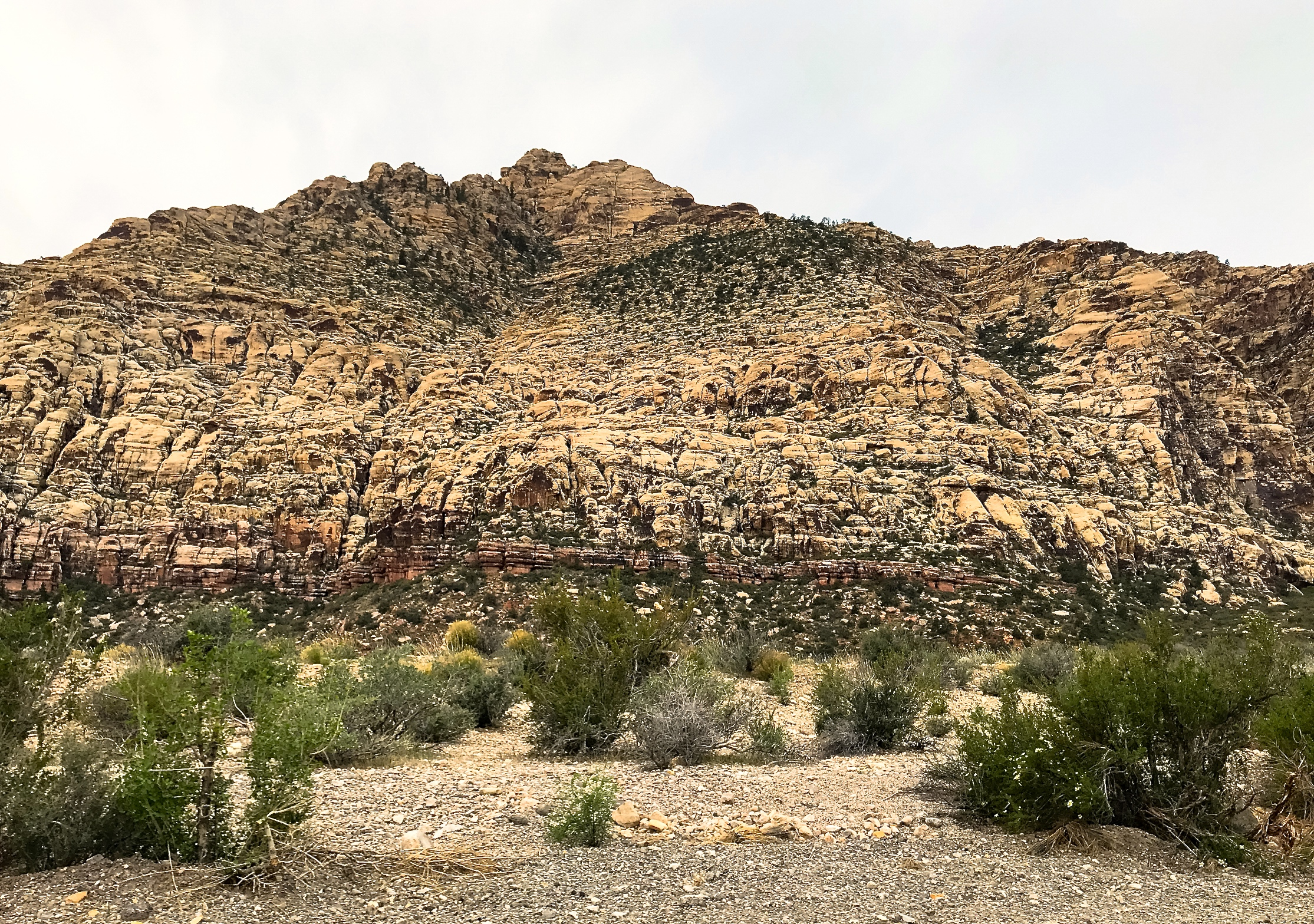 @ Red Rock Canyon_Nevada__4.15.18.jpg