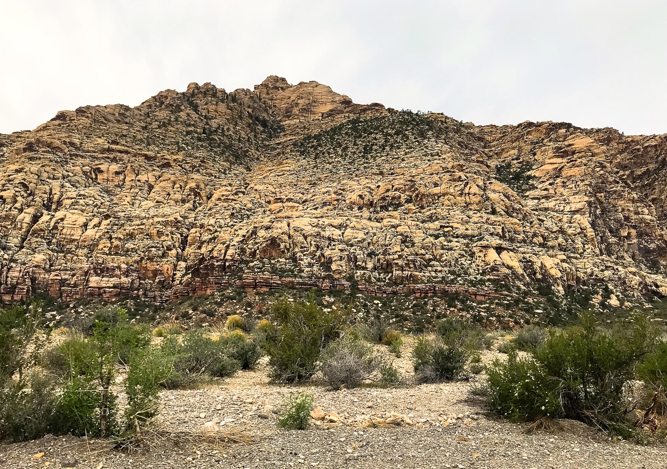 @ Red Rock Canyon_Nevada__4.15.18.jpg