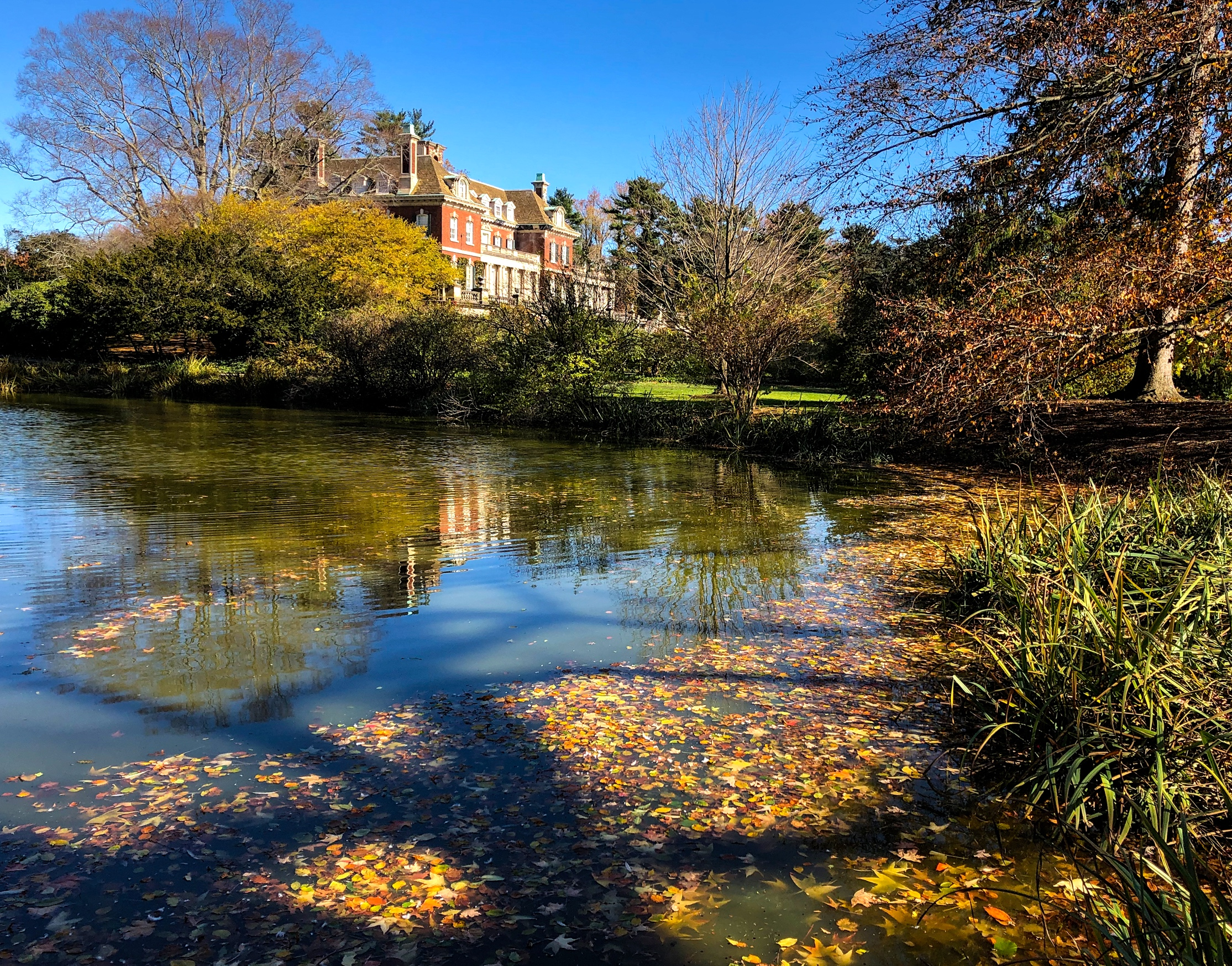 __@ Westbury House_West Pond_Old Westbury Gardens 11.11.18.jpg