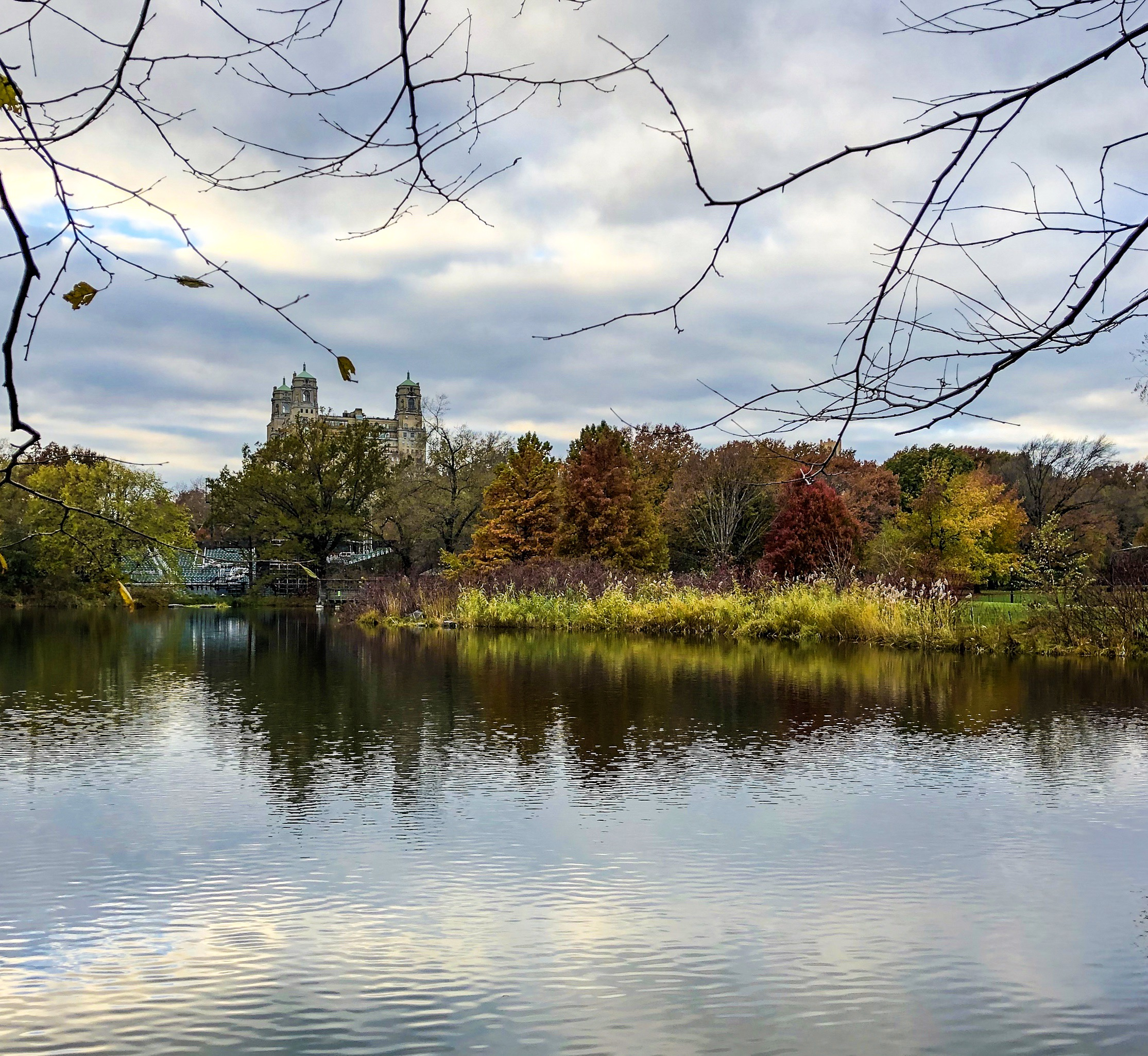 @ Turtle Pond_autumn_colors_Central Park_11.17.18_Photo © 2018 Joseph Kellard:kellardmedia.com.jpg