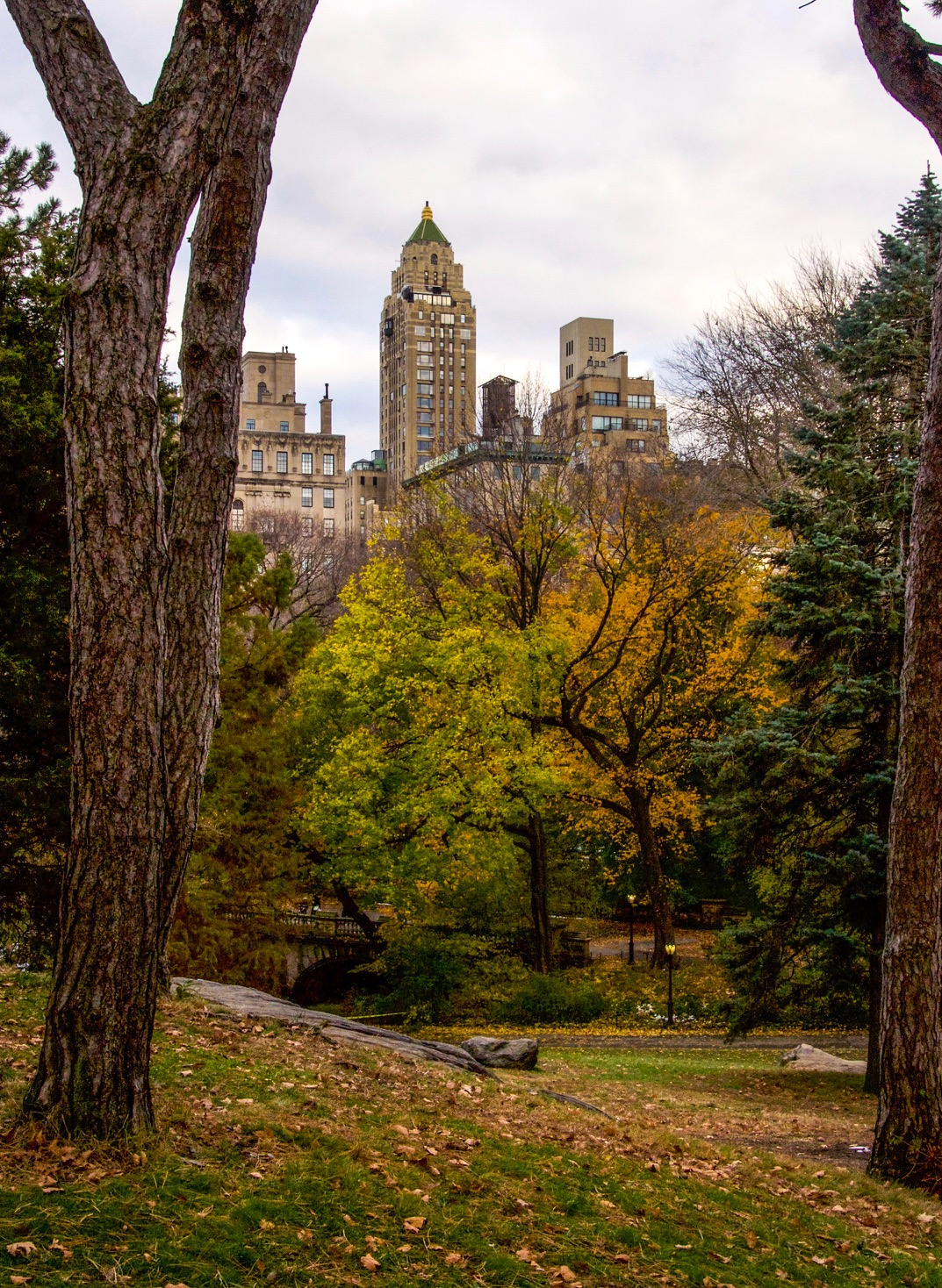 @ Carlyle_Hotel_Central_Park_autumn trees_ 11.17.18_Photo © 2018 Joseph Kellard:kellardmedia.com.jpg