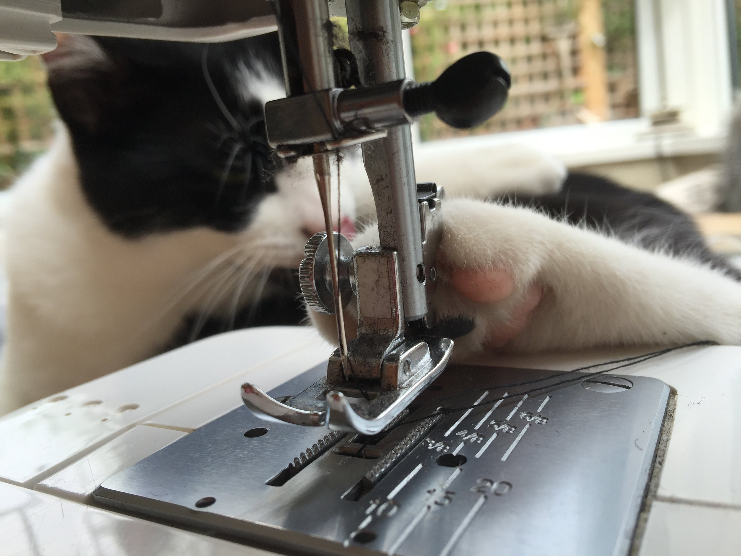 SEWING IN PROGRESS - We're working on a new website