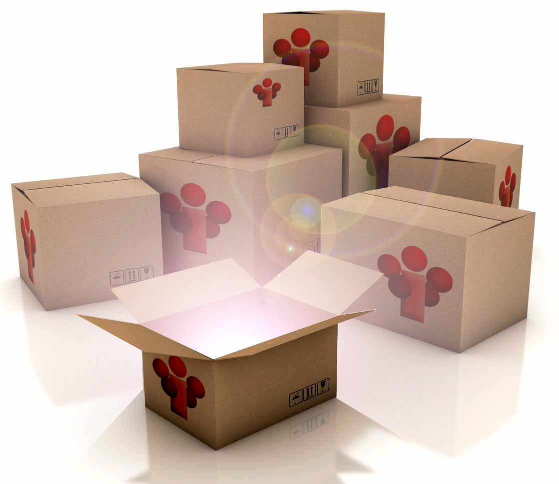THTE-Boxes.png