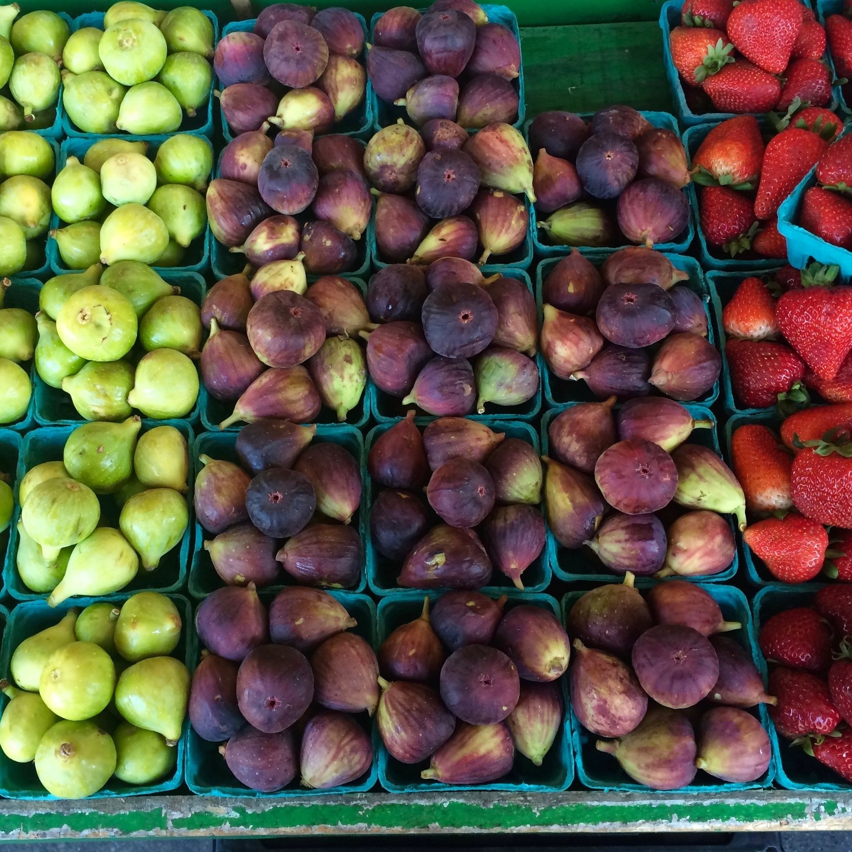 healthy living is a priority - • Regular deliveries from the Farmstead CSA ensure that your food is delivered at its freshest, setting Wetrock Farm apart from other neighborhoods.• With sustainable farm practices, the Farmstead prioritizes delivering produce that is healthy and clean for both residents and the land.• With over 100 acres of pristine outdoor space to explore, nature is a part of everyday life. Imagine unpolluted air and clear night skies, walking trails and picnic areas, and beautiful backdrops outside of every window.