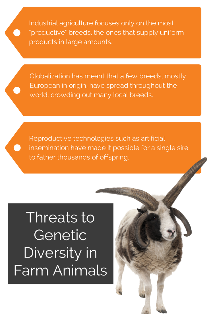 Threats to Genetic Diversity.jpg