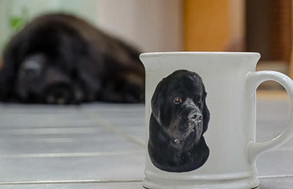 Skyla coffee cup.jpg