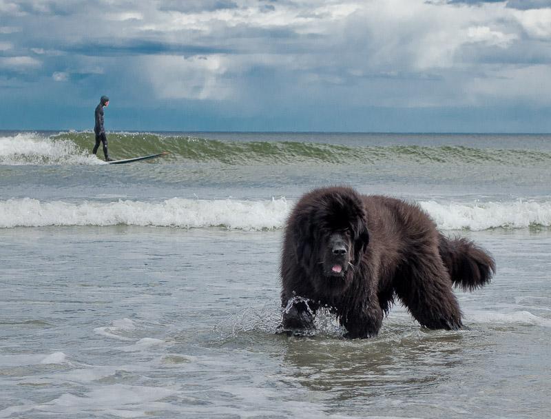 Skyla, Beach, Brian, Donna 2014-05-04 121.jpg