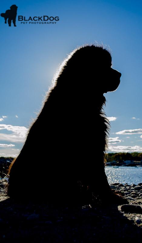 Skyla at Plum Island and Rye 2014-10-10 337-3.jpg