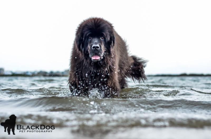 Skyla at Salisbury beach 2014-10-07 028-2.jpg