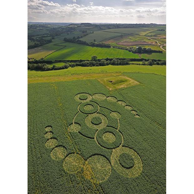 crop-circle-beans_1657058i.jpg