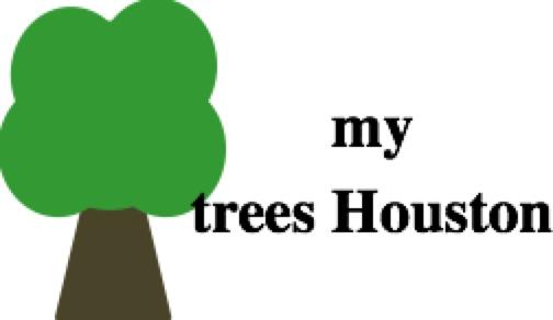My Trees Houston.jpg
