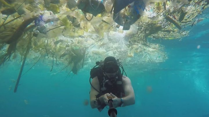 Diver Rich Horner has captured video of himself swimming through water densely strewn with plastic waste and yellowing food wrappers, with the occasional tropical fish darting around.