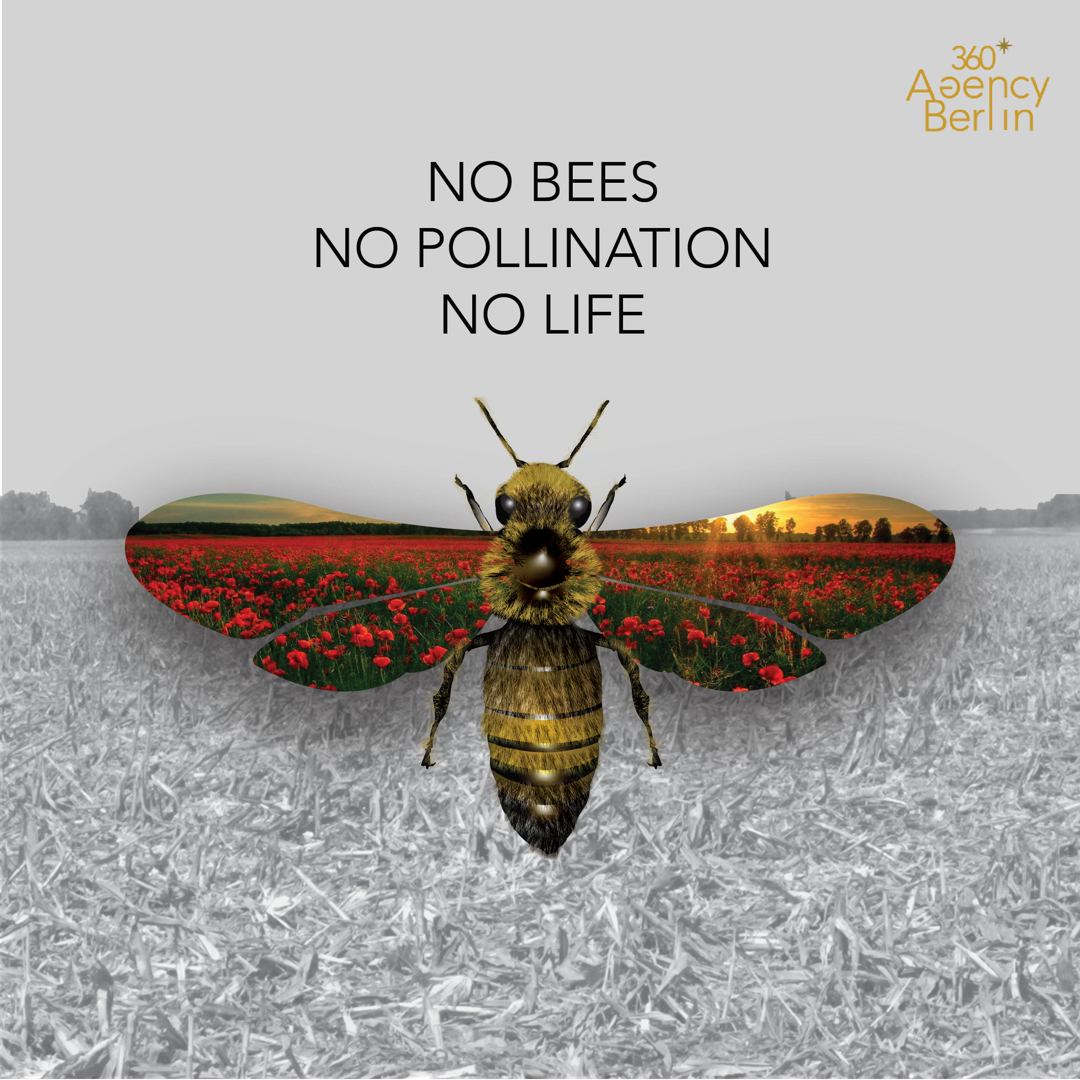 No pollination no life 360 Agency Berlin