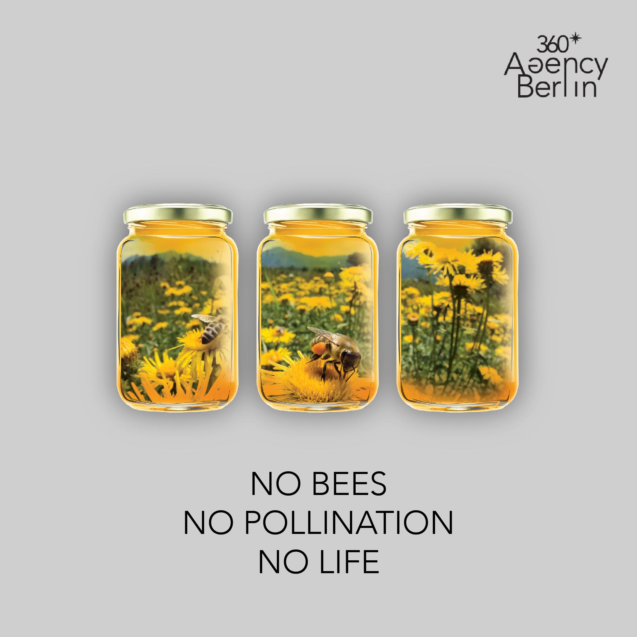 No bees No Pollination No Future 360 Agency Berlin