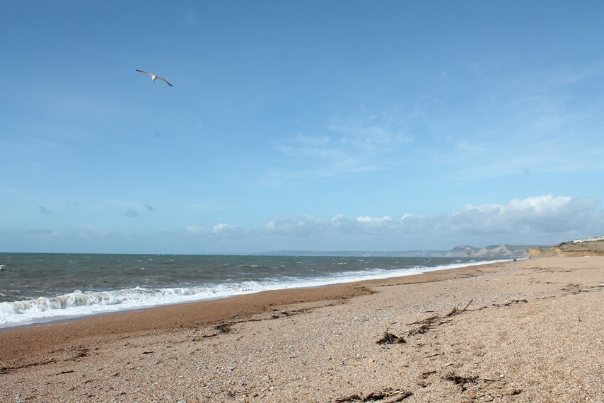 I had forgotten how loud beaches were, even without people. The noise of the water and the movement of the shingle and the rush of the wind across my ears. It was all encompassing and utterly enlivening.