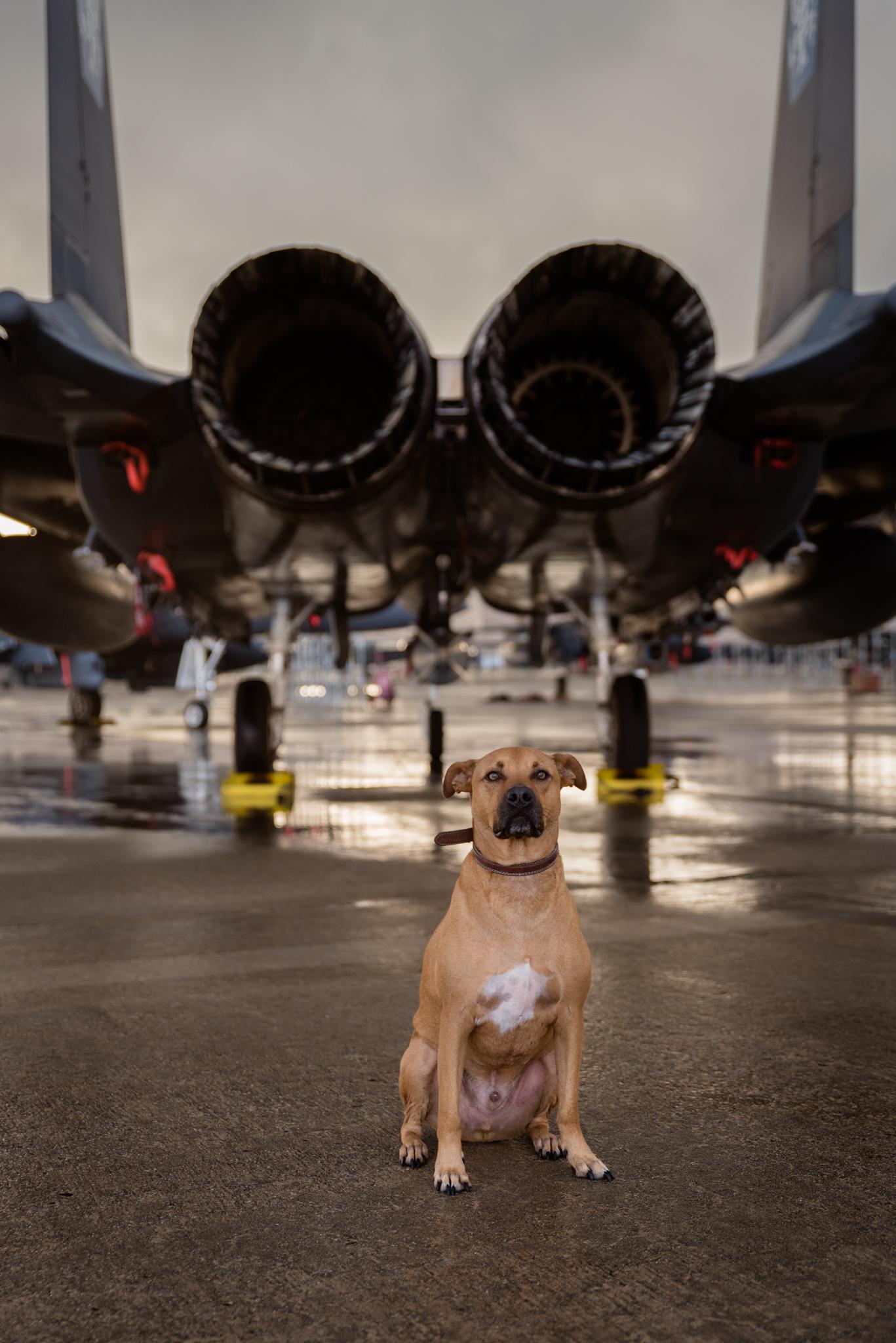 Eich Jet Photos-33.jpg