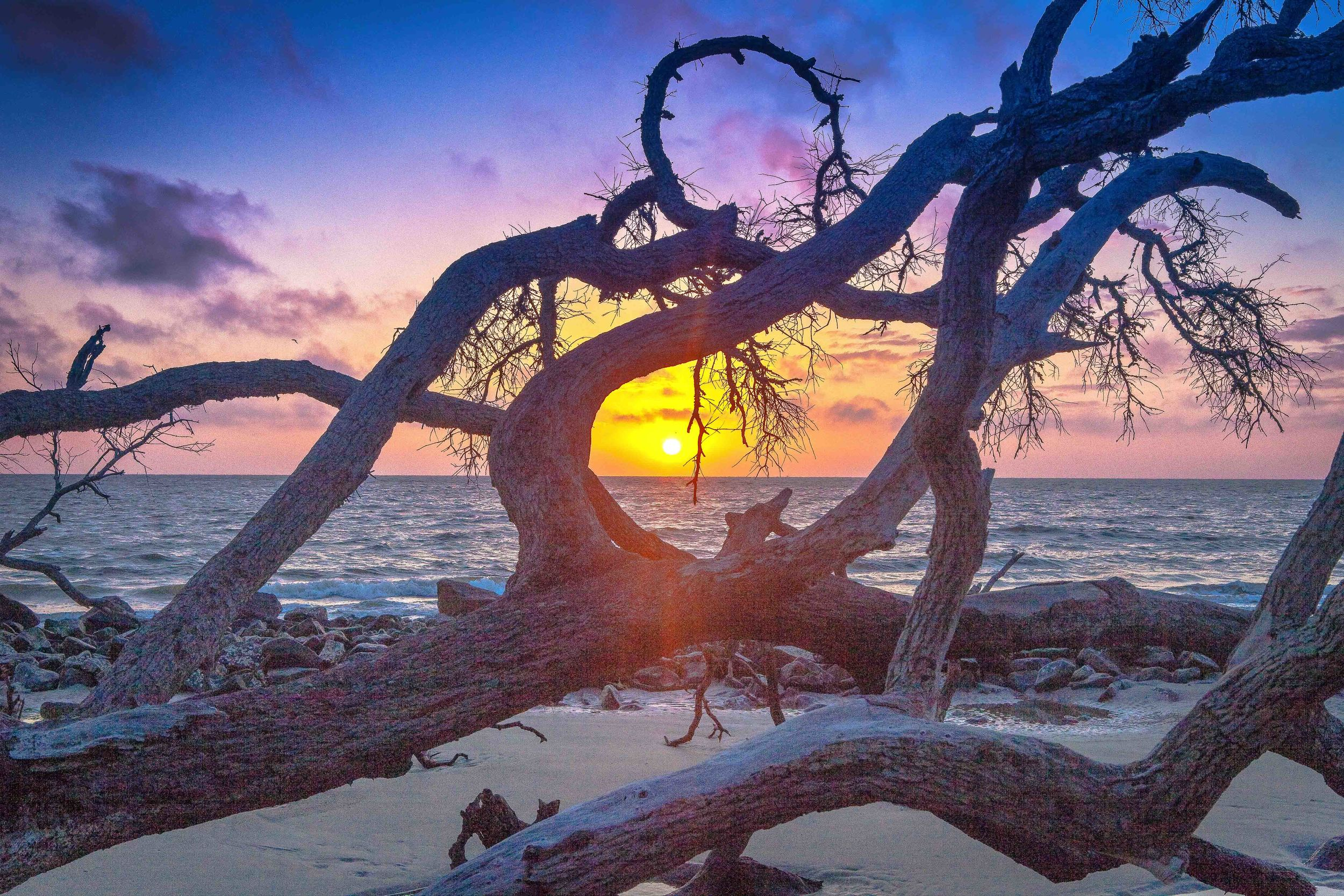 """Photo Credit: """"Sunrise at Driftwood Beach"""" courtesy of Achilles Morin Photography Galleries  http://www.achillesmorin.com/"""
