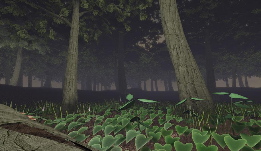 Forest3.jpg