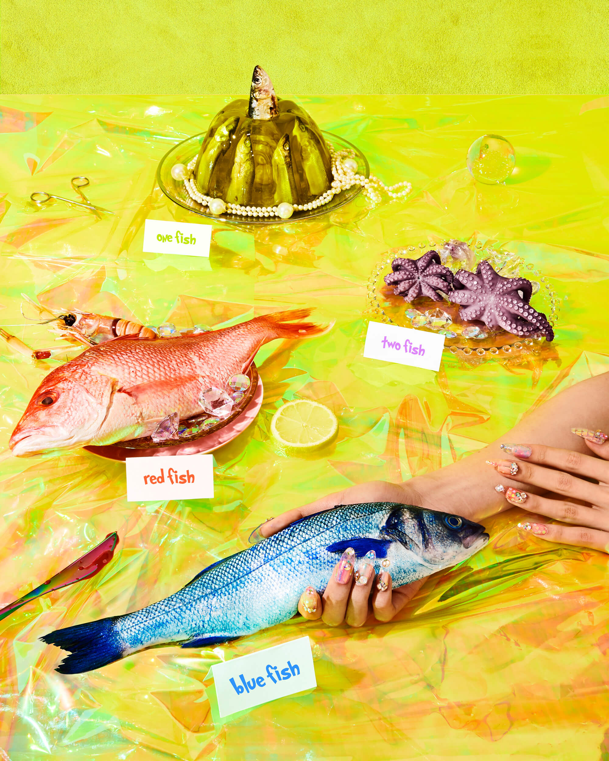 credits: photo- jenna gang, creative direction- edward yeung, prop styling- anna lemi, food styling- ali nardi, manicure- ada yeung, model- likai lai  description: conceptual food photograph of a one fish, two fish from Dr. Seuss. .