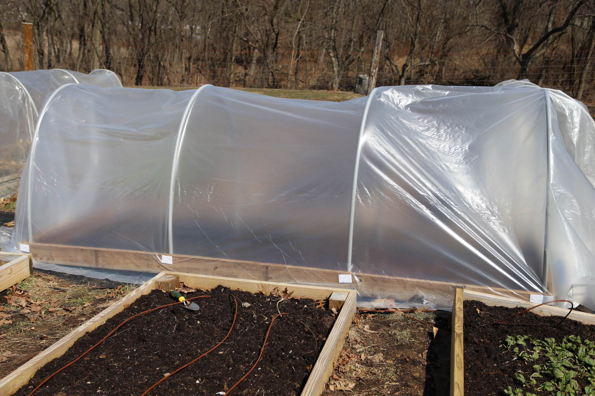 The completed coldframe, ready to go over a bed