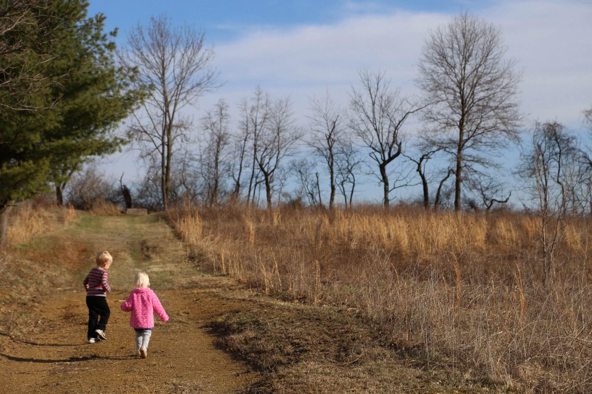 A postwinter stroll
