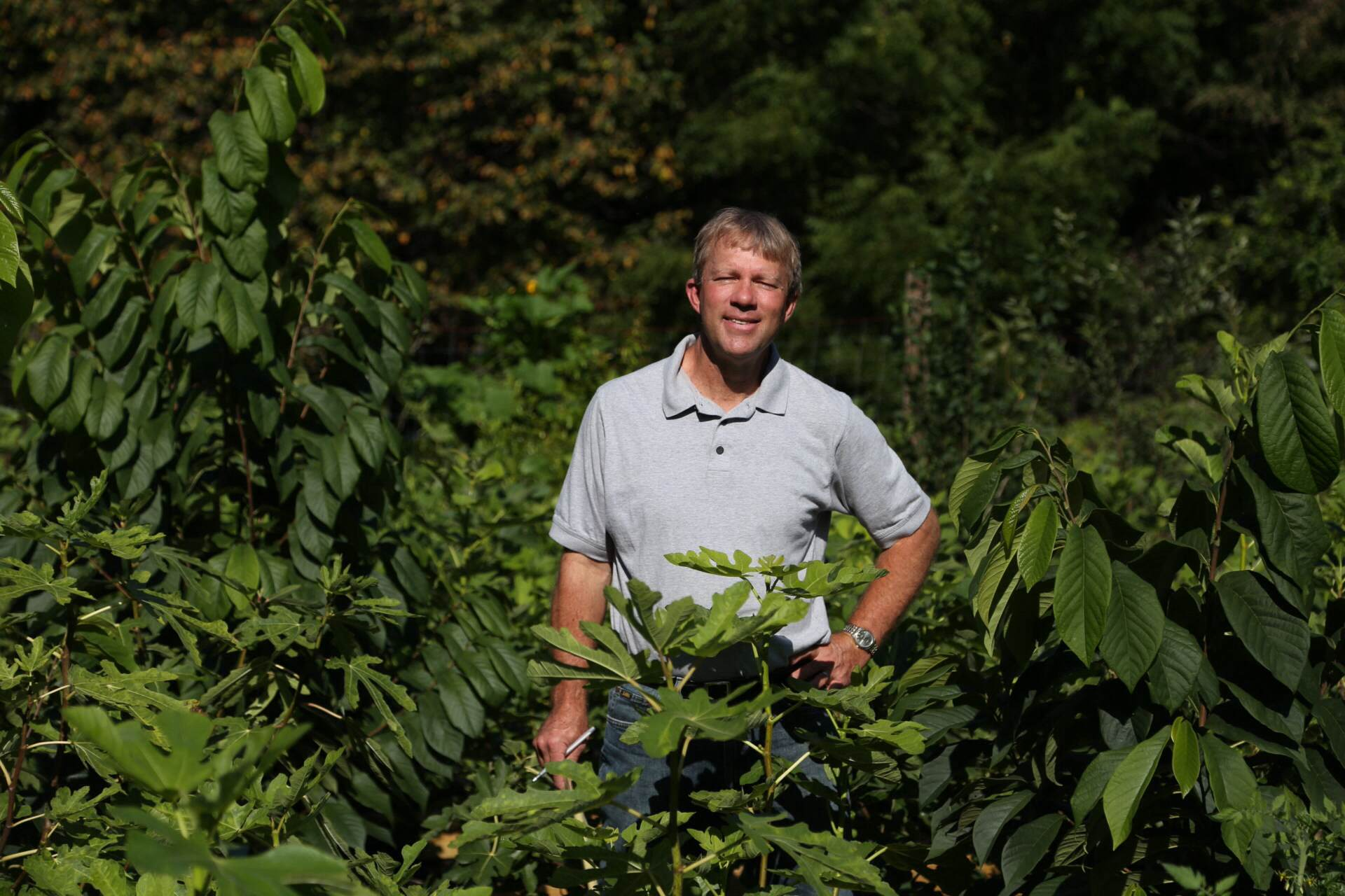 Garden guru George Weigel in amongst our potted figs and pawpaws