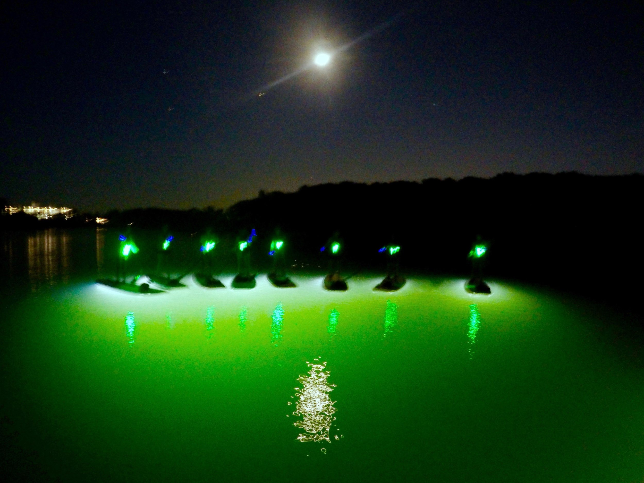 Moonlight paddle board tour