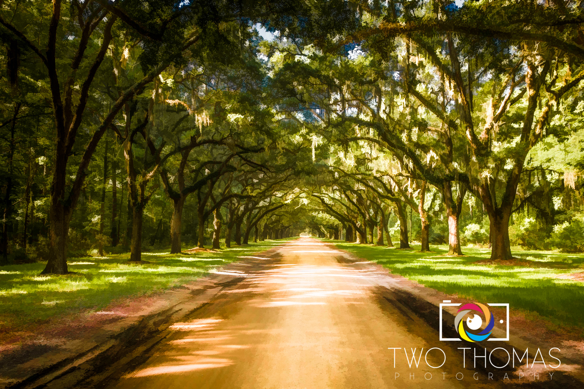 The tree-lined entrance into the Wormsloe Historic Site in Savannah is simply breathtaking!