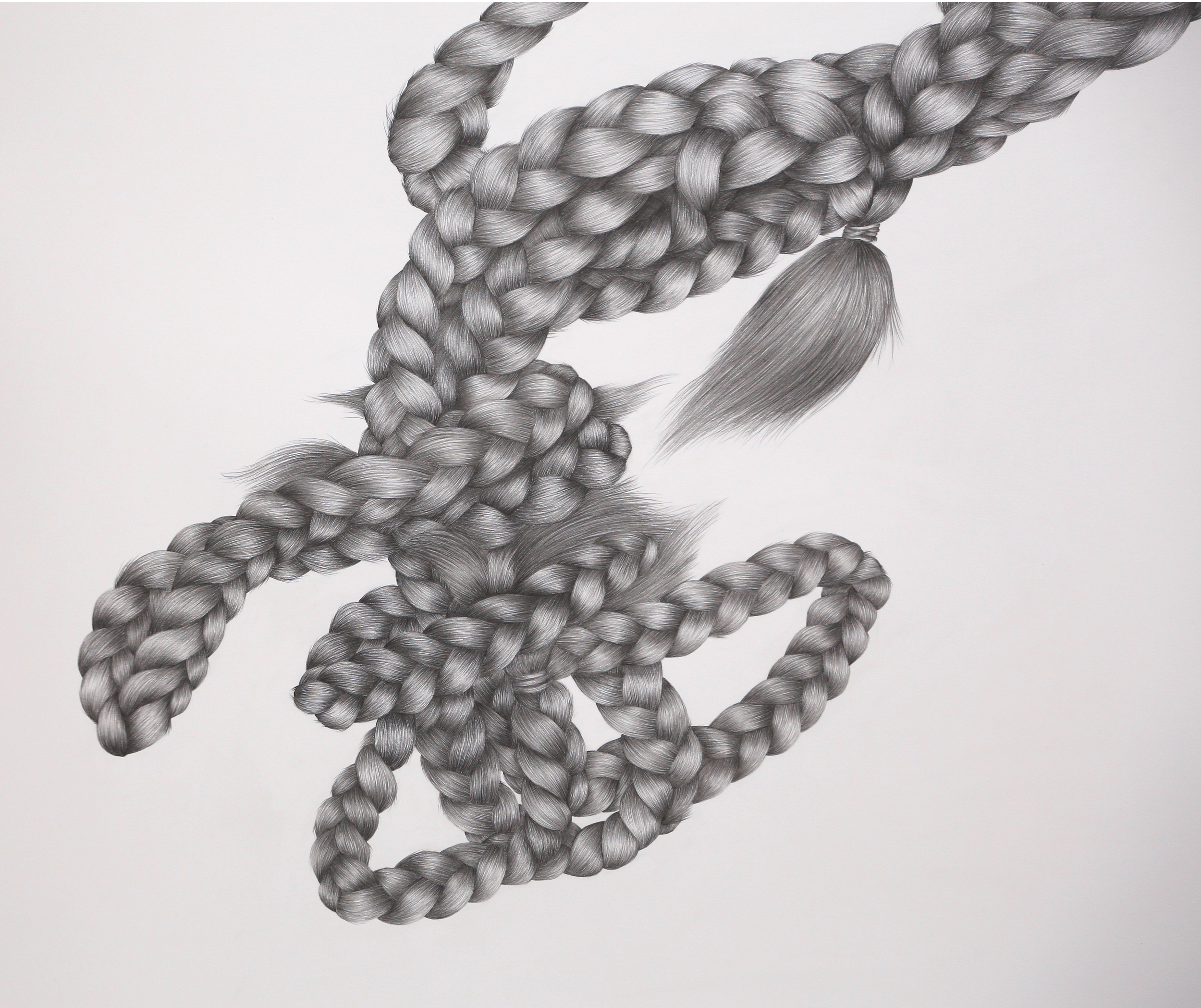 Tethers (detail) , 2013,Graphite on Paper, 1500mm x 1800mm