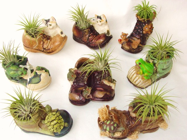 #414 Sm Shoe planters