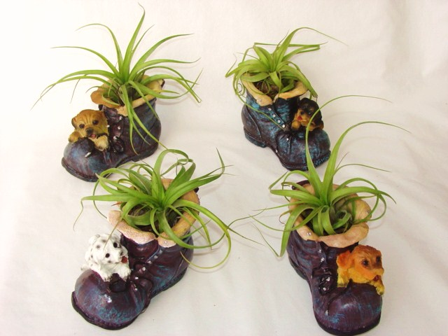 #415 Med Shoe planters with Dogs