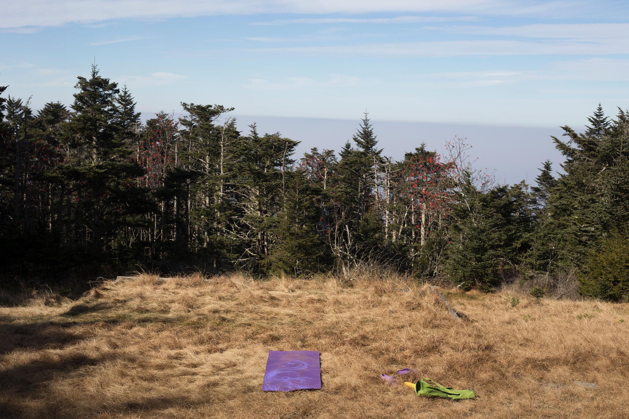 Yoga_November_Leconte_web.jpg
