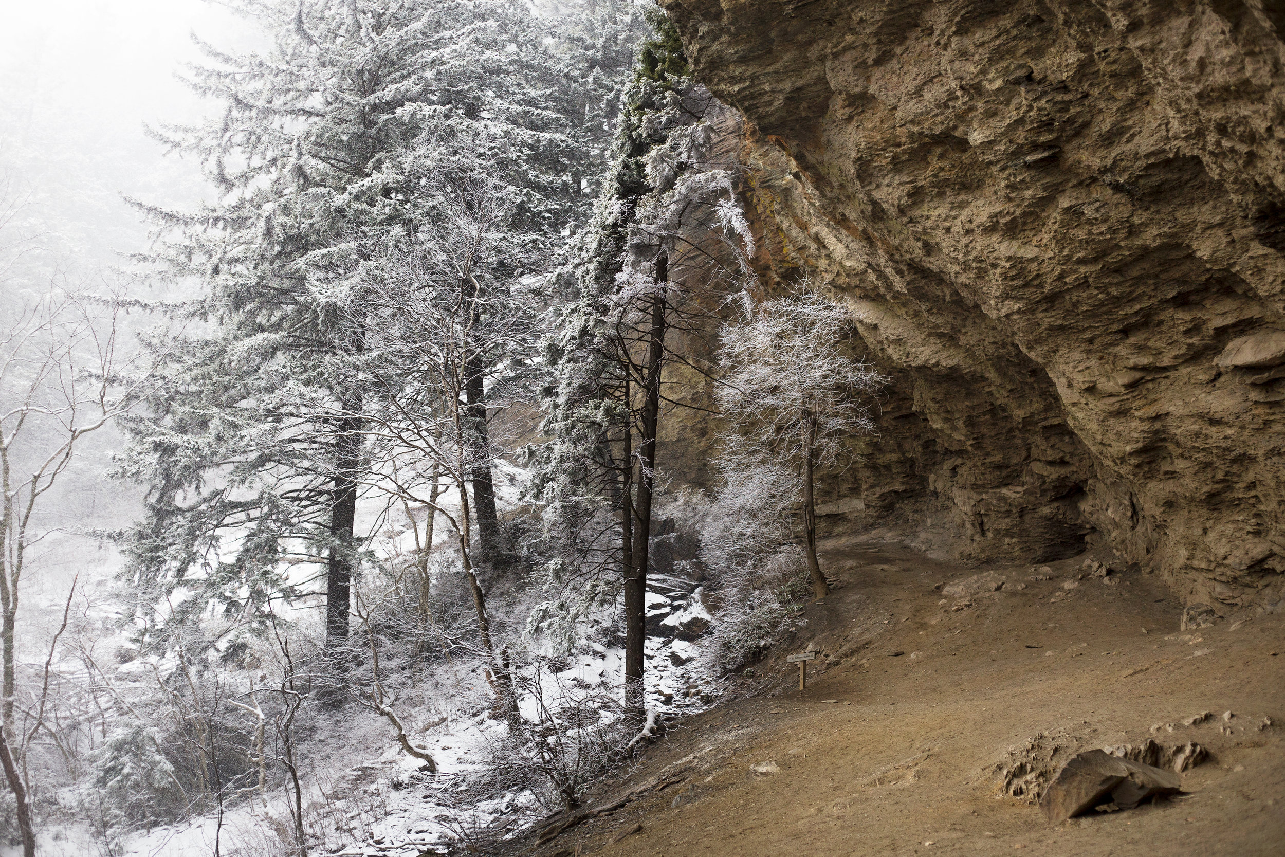 TheBluffs_March_leconte_web.jpg