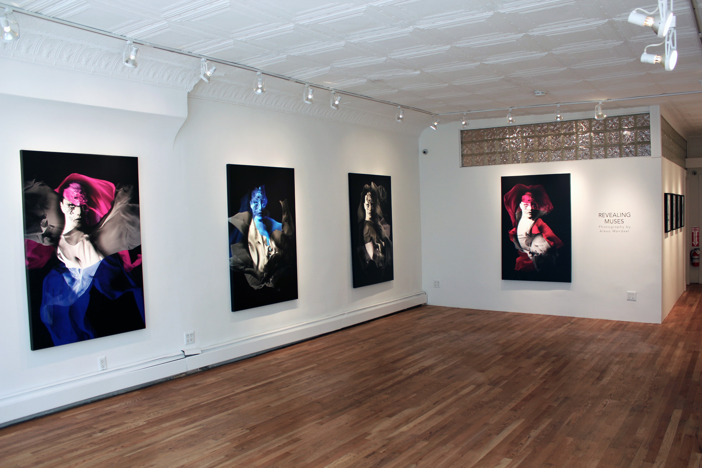 REVEALING MUSES - INSTALLATION VIEW