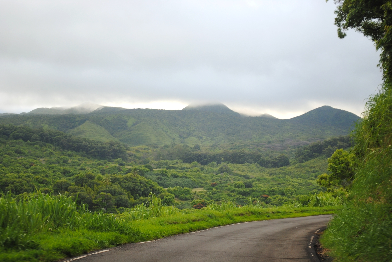 The main road in Hana