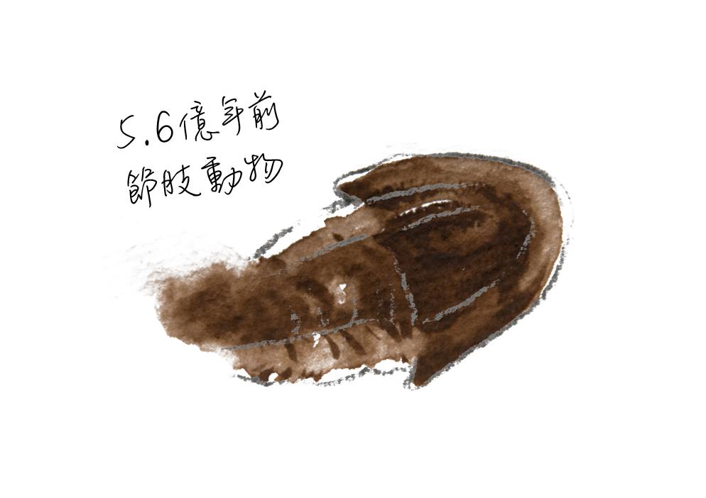 動物圖-04.jpg