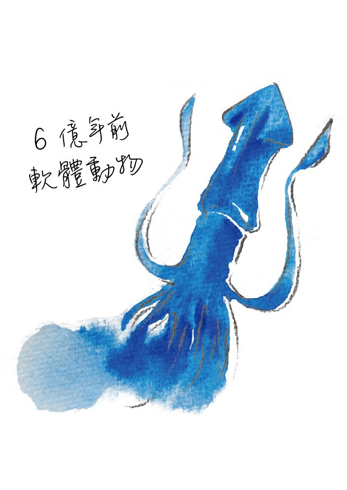 動物圖-03.jpg