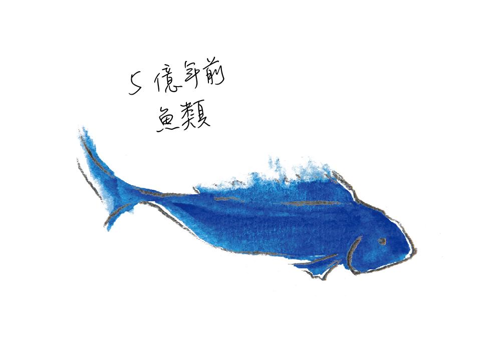動物圖-05.jpg