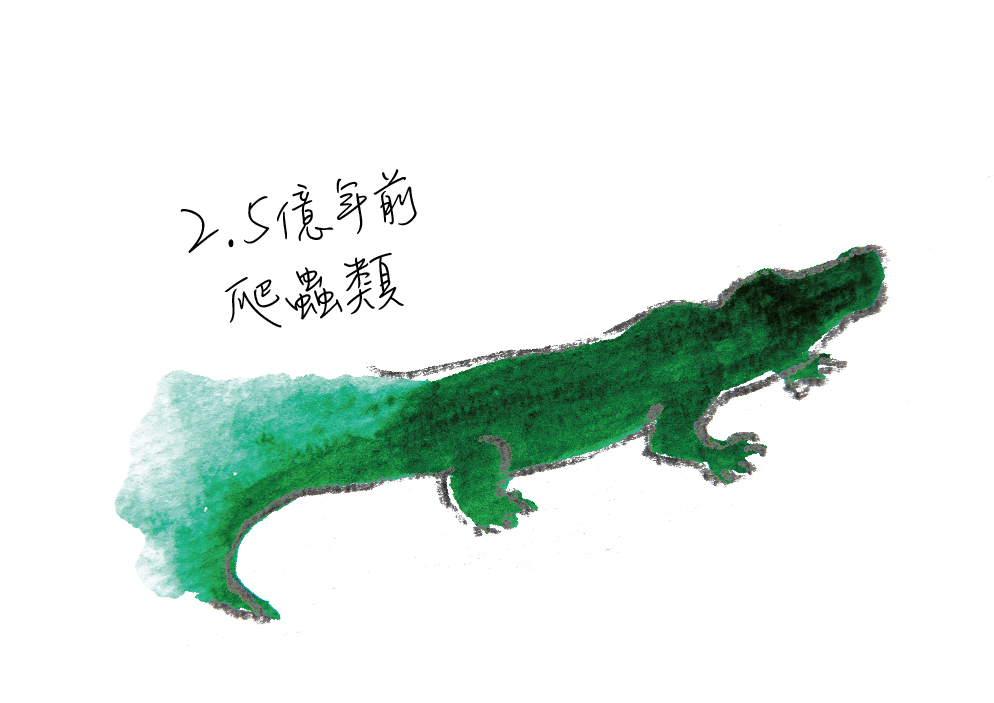 動物圖-07.jpg