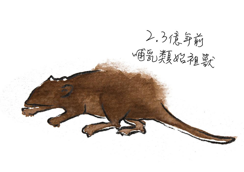 動物圖-08.jpg