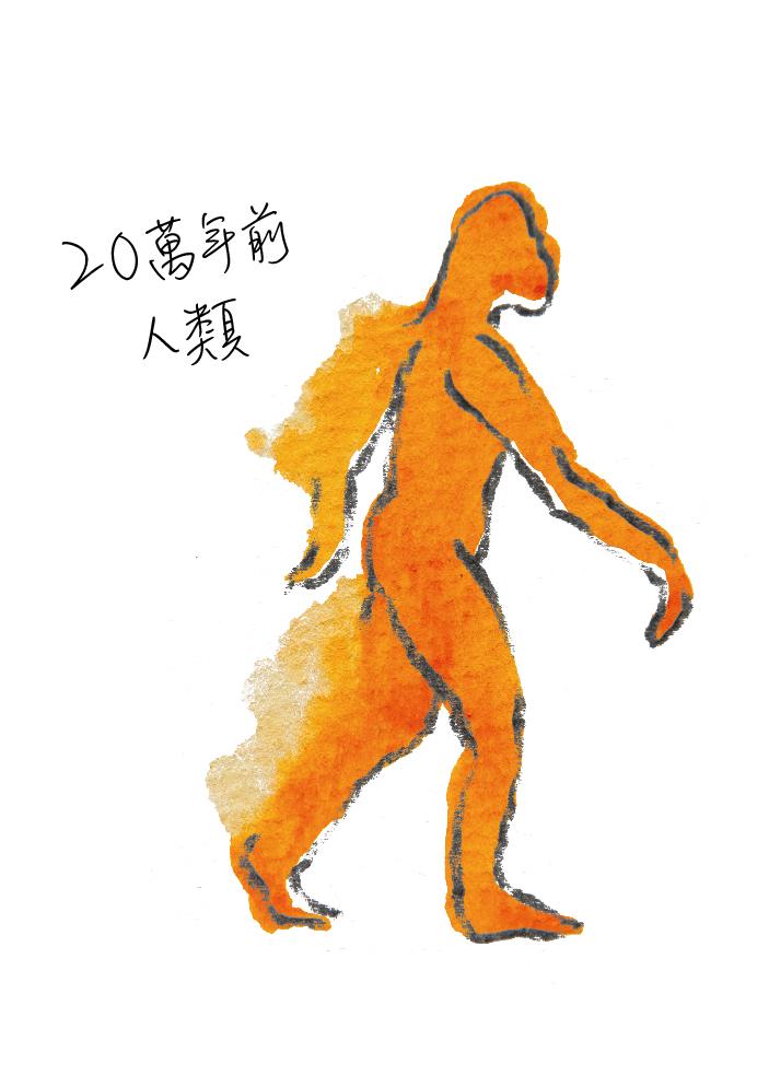動物圖-11.jpg
