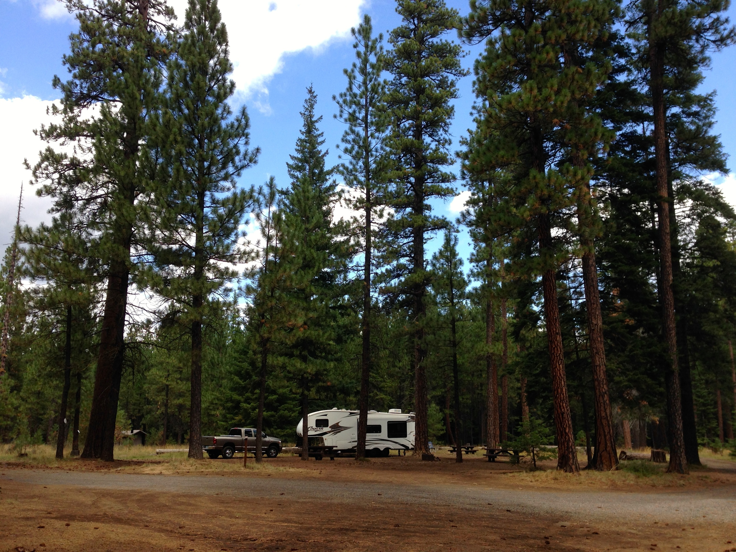Jack Creek Campground in central, Oregon, near the Metolius River