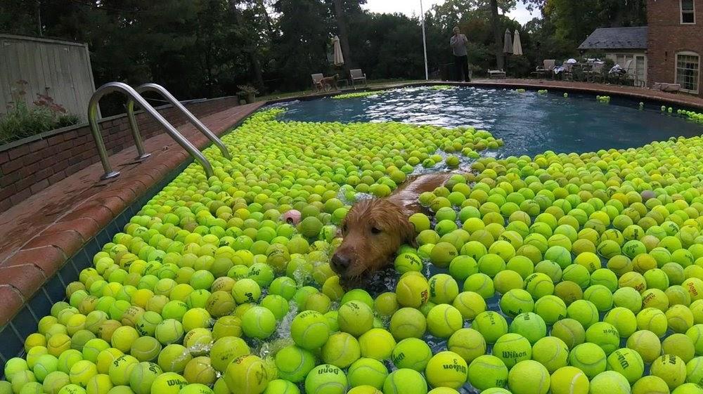 Kyle swimming in Tennis Balls.jpg