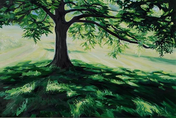 """""""Old Shade Tree (Pecan), Hot Summer Morning"""" Oil on canvas 20"""" x 30"""""""