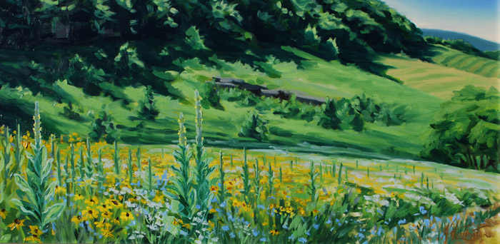 """""""Wildflower Meadow at Sunnyside with Mullen, Soapwart and Coreopsis"""" Oil on panel 12"""" x 24"""""""