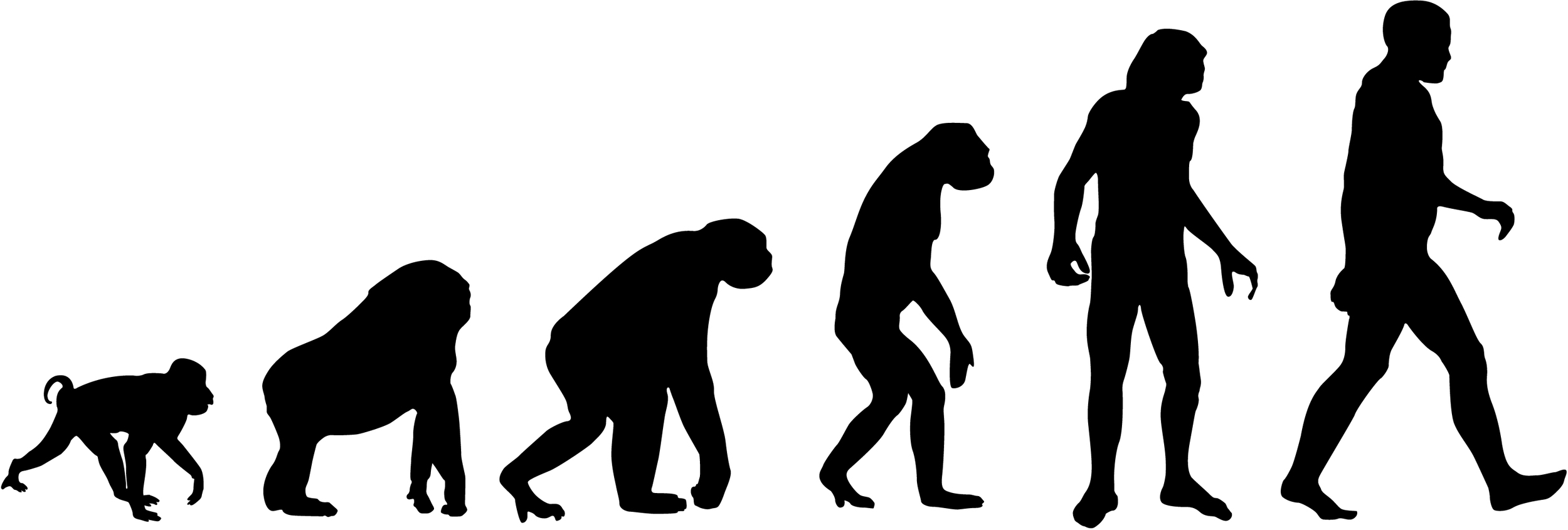 A portrayal of man's evolution